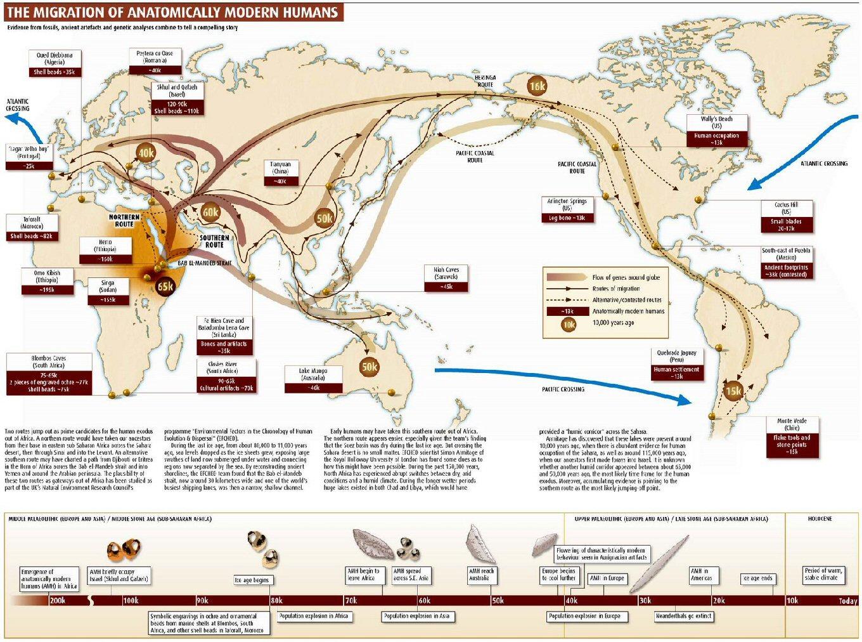http://3.bp.blogspot.com/-CDe4ApbWe_Q/URgdESis8LI/AAAAAAAABpg/hiLRYfdnGl8/s1600/Migration3.jpg