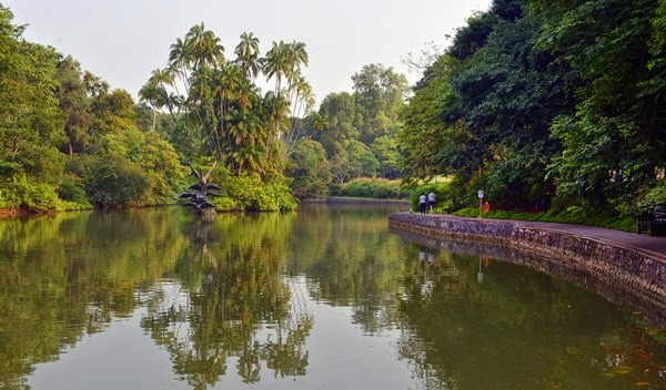 Want to learn more about the Singapore Botanic Gardens?