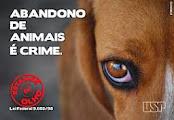 abandono de animais é crime...