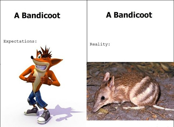 Crash Bandicoot In Real Life - Expectations vs Reality