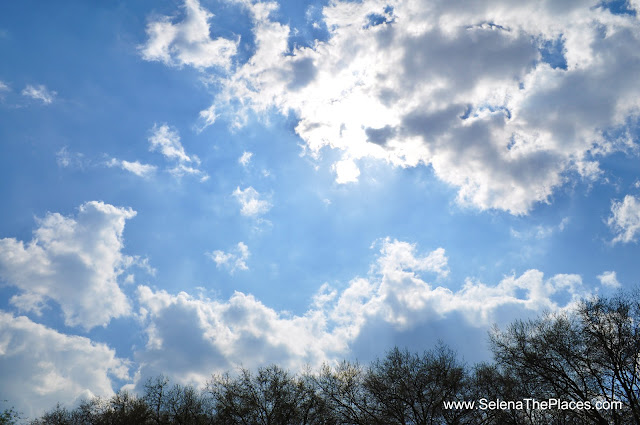 Blue Skies London