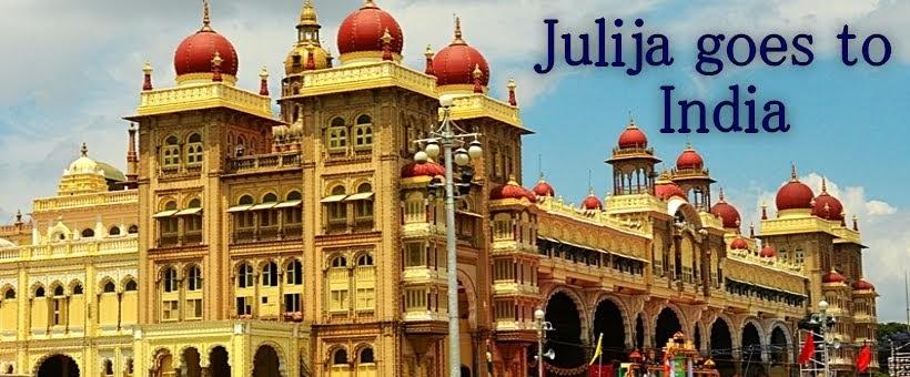 Mein Auslandsjahr in Indien