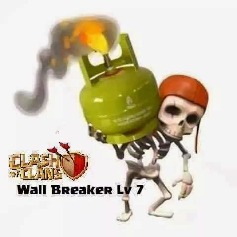 wb level 7