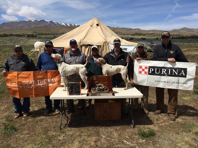 2017 Western Open All Age - Bay Area Bird Dog Club - Red Rock, Reno, NV