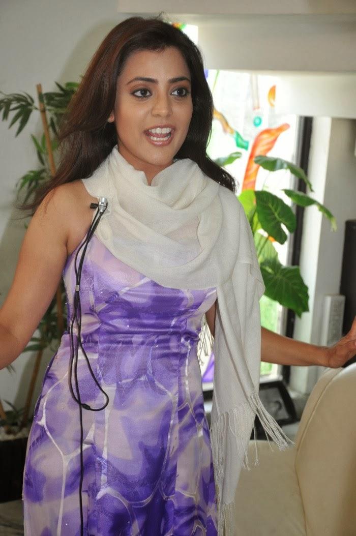 Nisha Aggarwal Hot XXX Photos