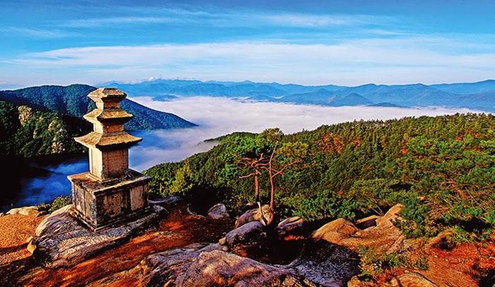 ERBORIAN-KOREA-SEPHORA-BELLEZA-EXOTICA-DEL-MUNDO-TALESTRIP