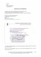 IMPRUDENCIA TEMERARIA (ANO2008)