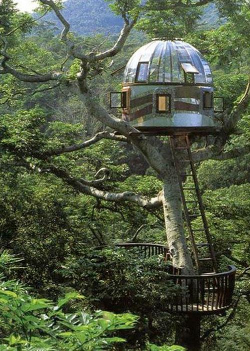 7 Amazing Houses Built Into Nature: Amazing House