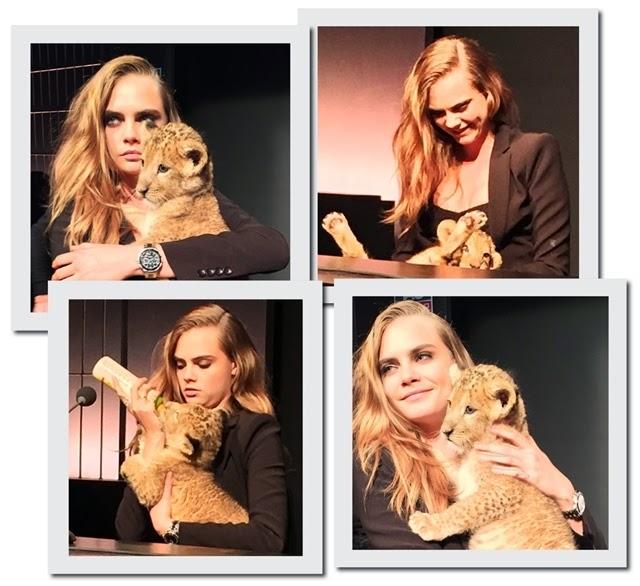 A top Cara Delevingne mostra seu lado selvagem e brinca com leão