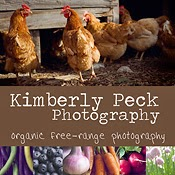 www.kimberlypeckphotography.com