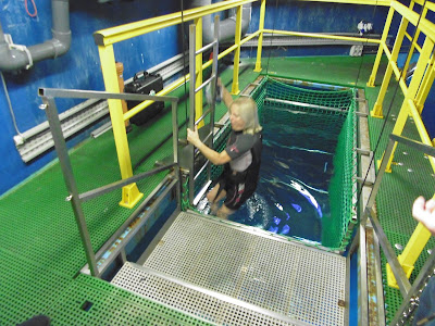 shark cage at SEA LIFE London Aquarium