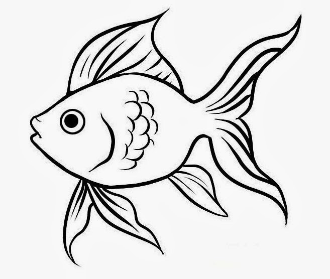 Cute Fish Drawings Cute Best Fish Drawing hd