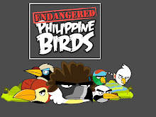 Endangered Philippine Birds