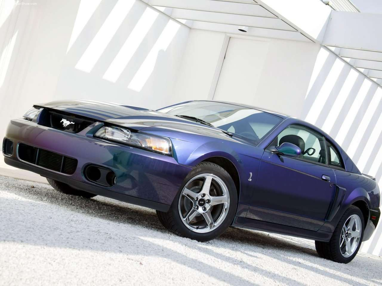 Ford   Populaire fran  ais dautomobiles  2004 Ford SVT Mustang