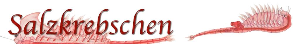 Salzkrebschen: Urzeitkrebse