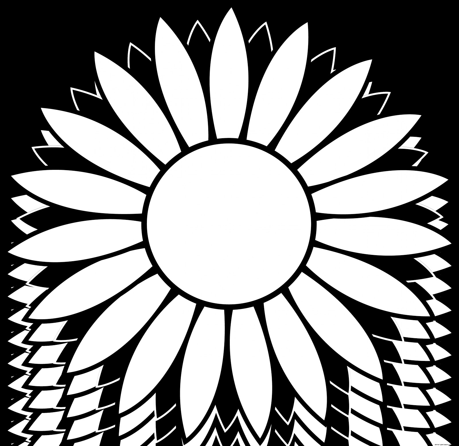 Sunflowers Clip Art Black And White | Amazing Wallpapers for Clipart Sunflower Black And White  143gtk