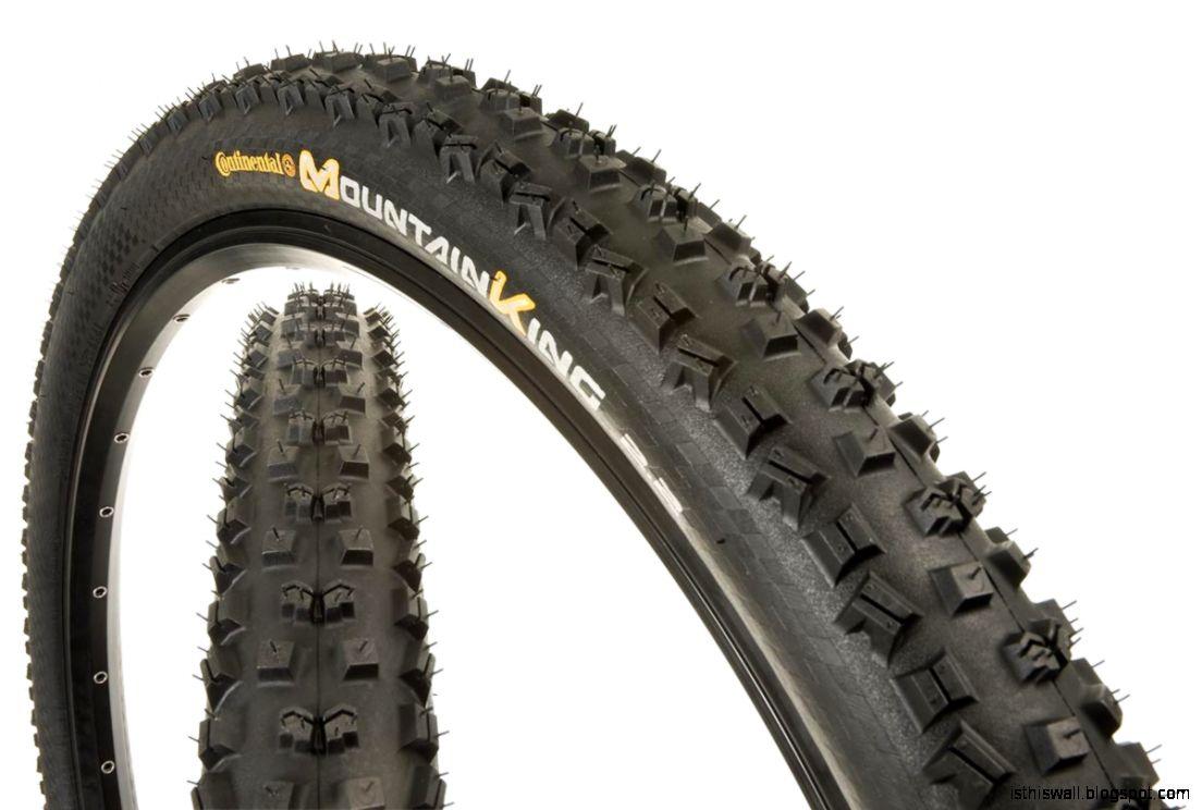 Best 29 Mountain Bike Tires