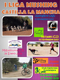 Liga Mushing  CLM 2017-18