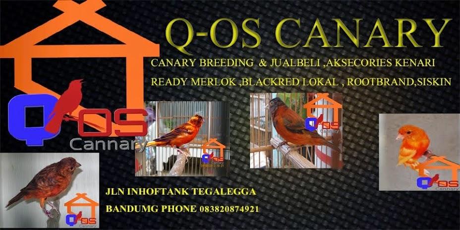 Q-os canary