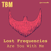LOST FREQUENCIES : ARE YOU WITH ME