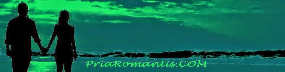 pria romantis
