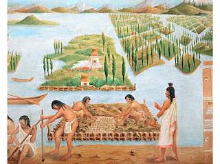 sistema de riego y cultivo por chinampas