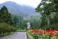 Bedugul, Botanical Garden