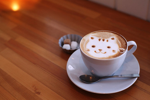 cute cat picture in cup=)