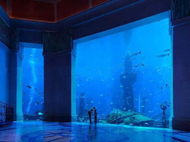 A closer look at dubai s underwater hotel angelic hugs for Hotel bajo el agua precio