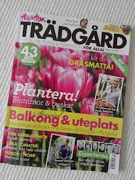 Pergolan i Hus & Hem Trädgård nr 2/2012
