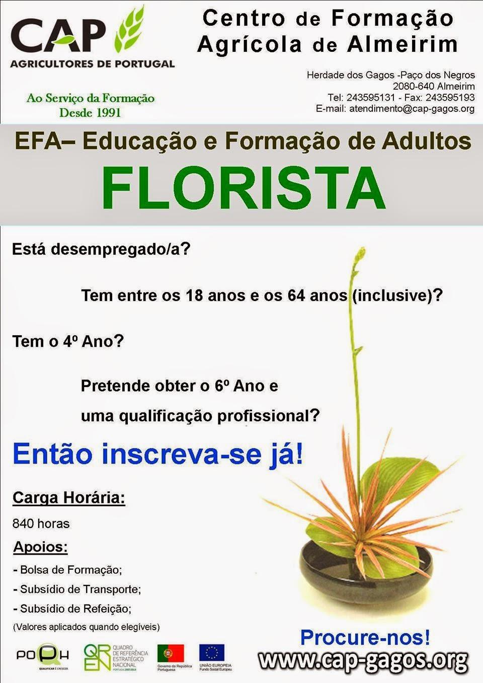 Curso efa de florista em Almeirim (equivalência ao 6º ano de escolaridade)