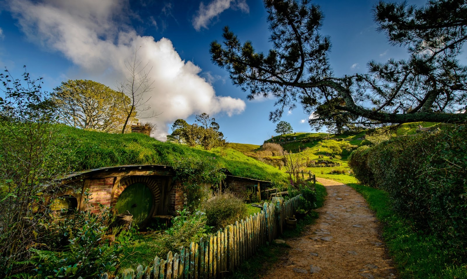 Matamata New Zealand  city images : Matamata Hobbiton,