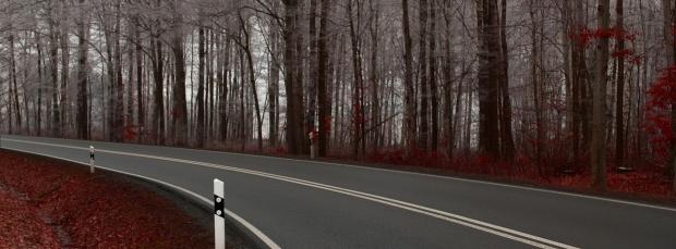 facebook sonbahar kapak resimleri+%252812%2529 Facebook Zaman Tüneli Sonbahar Manzara Kapak Resimleri