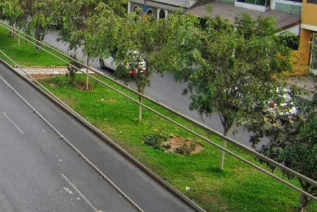 Urbanizacion Las Flores S.J.L. Lima Perú