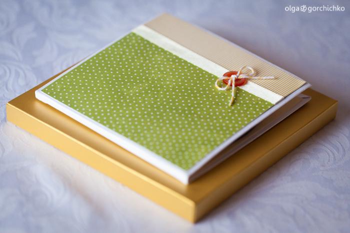 Минибук и конверт для диска. Осенняя фотосессия Назара