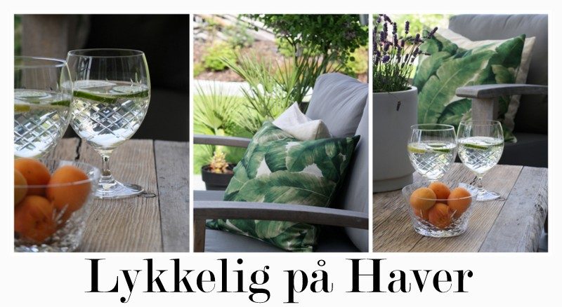 Lykkelig på Haver