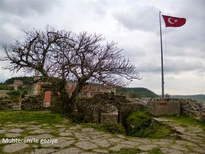 bayrak direği