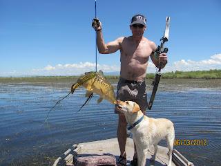 Carp bowfishing