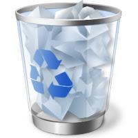 Recycle Bin folder picture