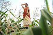Tanvi vyas Latest Photos in Half Saree-thumbnail-16