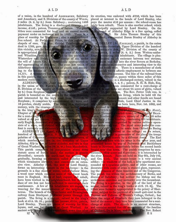 Buckets of Love Dachshund illustration by Kelly Stevens on Etsy