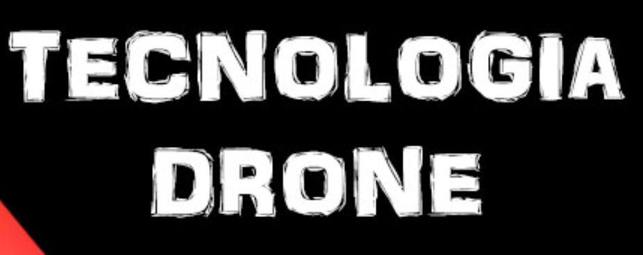 Treball de Recerca sobre Drones