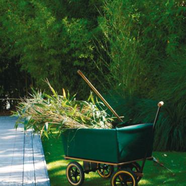 Blog de jardinage le plaisir du jardinage en automne for Les meilleurs sites de jardinage