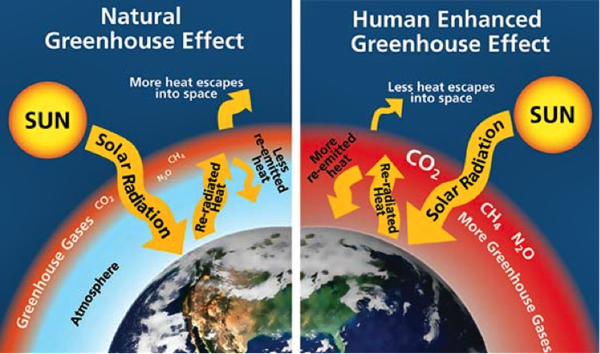 Global Warming - A Summary of Results and Causes