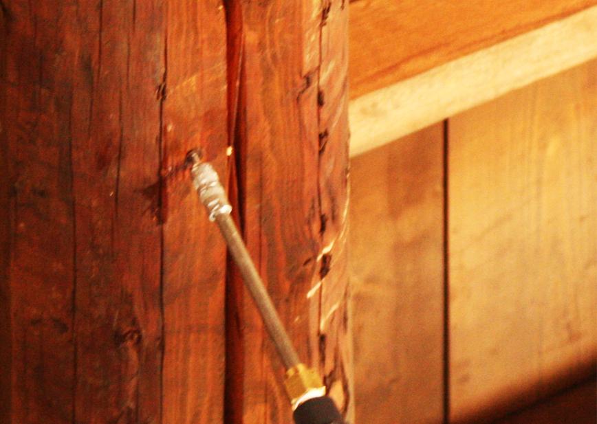 Trattamenti Antitarlo Travi e Capriate: Trattamento antitarlo di ...