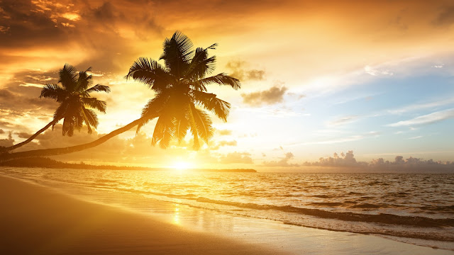 Caribbean Coast Scenery