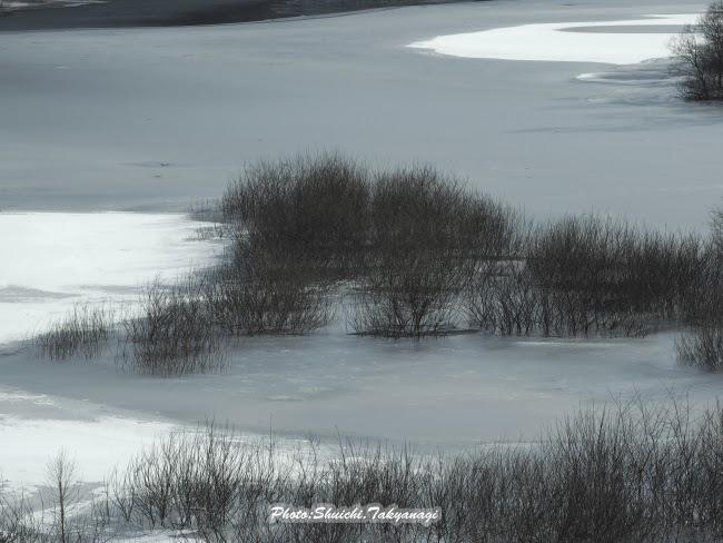 栃木県 日光 五十里湖 e-m1 om-d 50-200mm