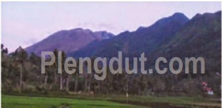 Daerah subur sekitar Gunung Guntur, Jawa Barat menjadi penghasil berbagai produk pertanian.
