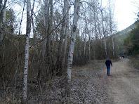 Caminant per la vessant esquerra del Cardener