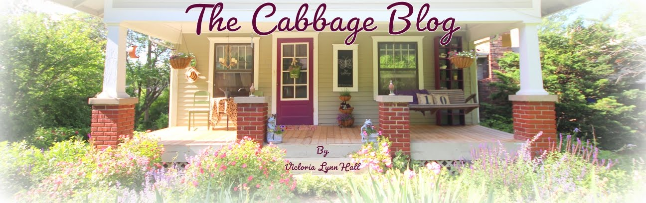 The Cabbage Blog